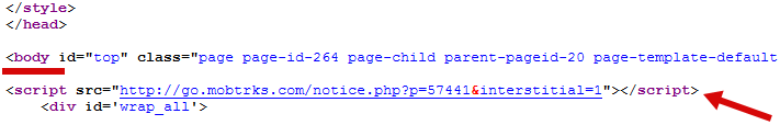 Step 6: Paste Ad Channel Code