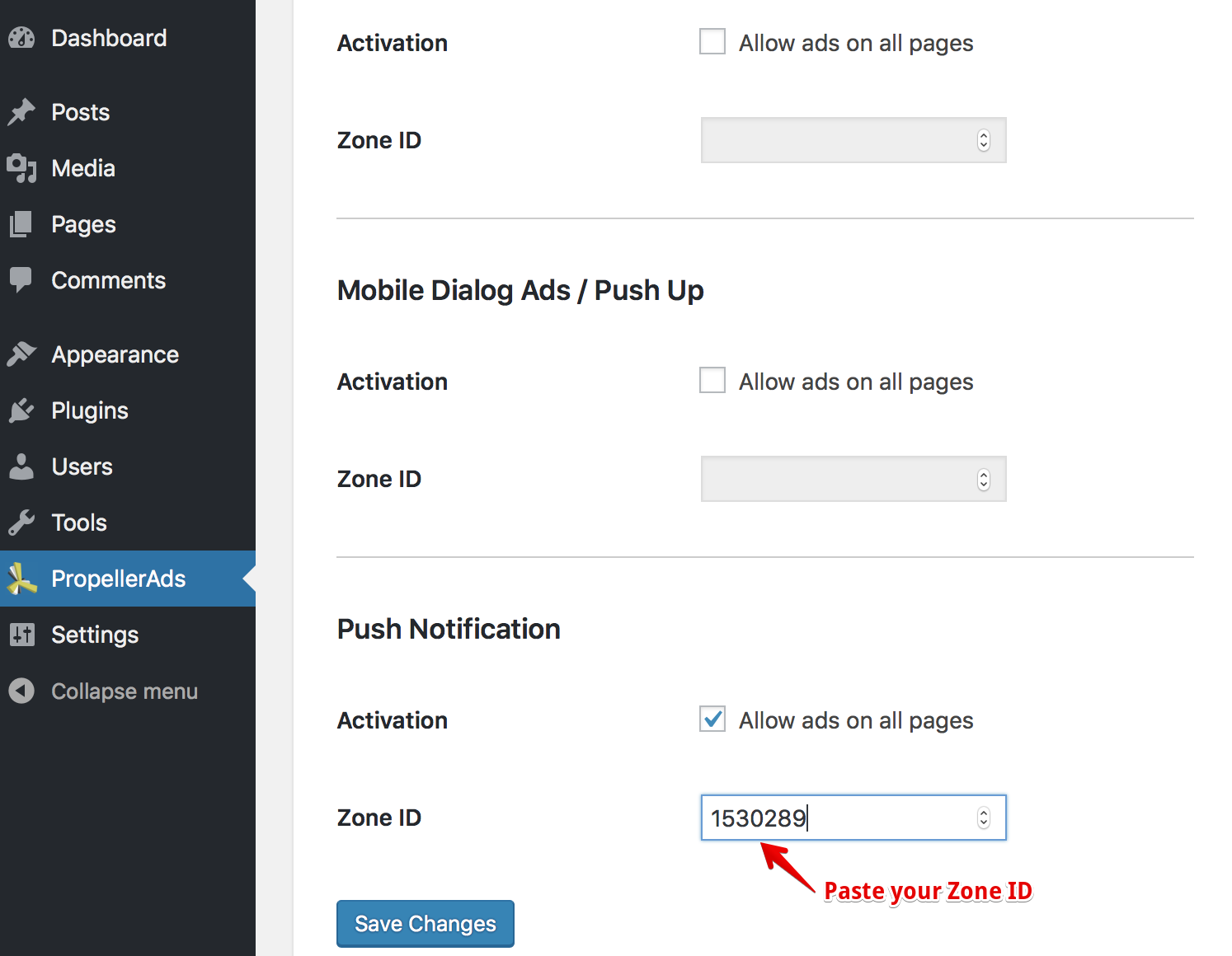 Enable Push Notifications in WordPress