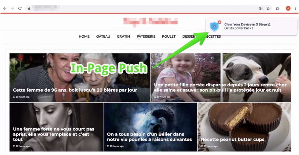 in-page push campaign - propellerads